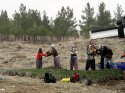 Doğu Anadolu'da 13 milyon fidan toprakla buluşturulacak