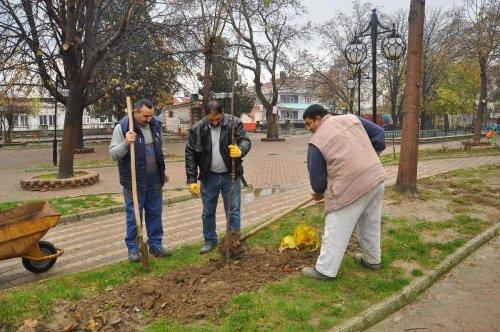 Malkara'da ağaçlandırma çalışması