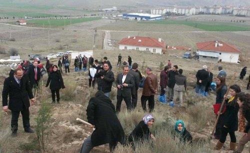 Beypazarı Belediyesi 2 bin fidanı toprakla buluşturdu