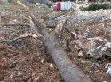 Burdur'da tır uçuruma yuvarlandı: 1 yaralı