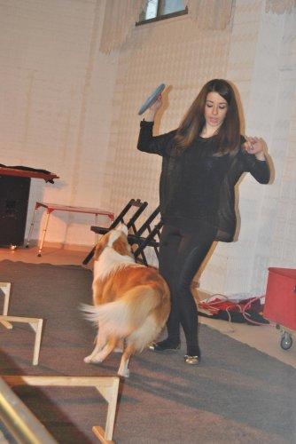 Carmen Sirki Hayrabolu'da