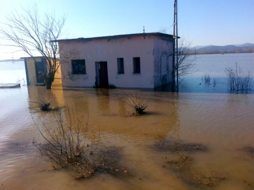 Edirne'deki nehir taşkınları