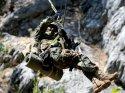 FLAŞ! PKK'ya operasyon başlatıldı