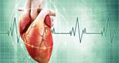 Kalbinizin ne kadar kuvvetli çarptığını gösteren gerçekler