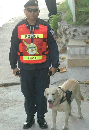 Tayland polis köpeği