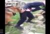 İsrail askerlerinden Filistinli çocuğa köpekli zulüm